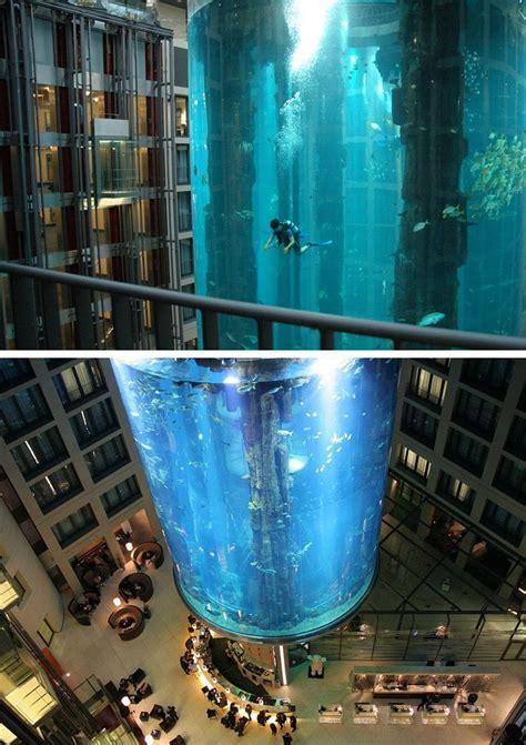 Timer Lu Aquarium 1000 images about pools on amazing