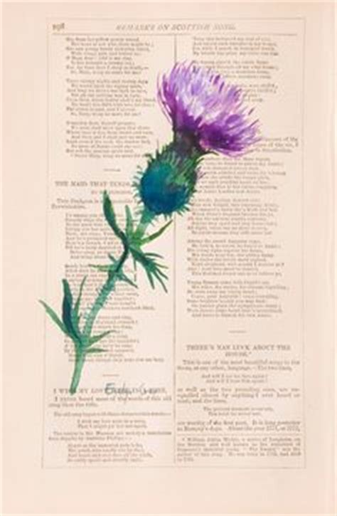 china doll in hammond watercolor thistle by jim at china doll in