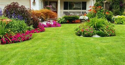 house landscape beautiful gardening front yard views with green grass and