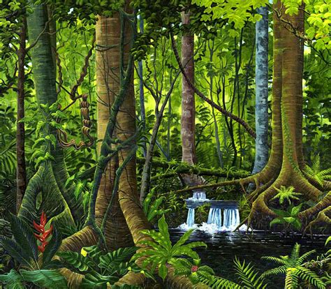 Most Popular Green Paint Colors by Osa Peninsula Rainforest By Michael Cranford