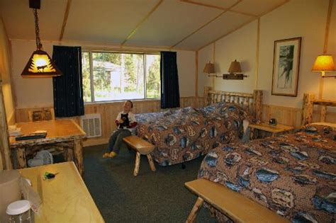 Lake Yellowstone Hotel Cabins by Lake Lodge Cabins Updated 2017 Prices Reviews