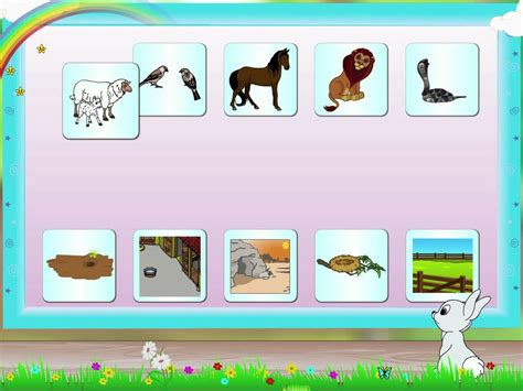 their home learn grade 2 grammer animal and their homes
