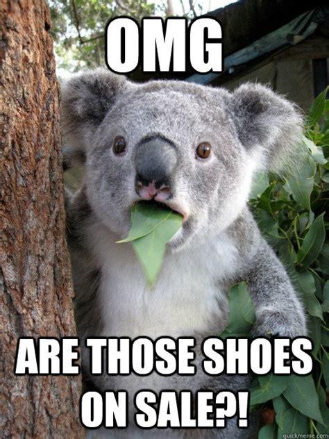 Meme Shoes For Sale - omg are those shoes on sale koala bear quickmeme