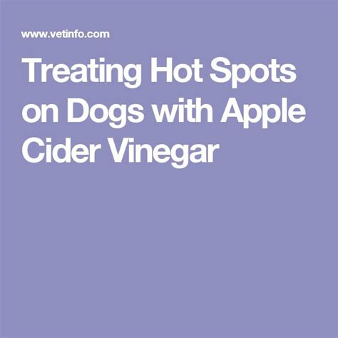 spot apple cider vinegar 147 best images about pets on food reviews beds and raised beds