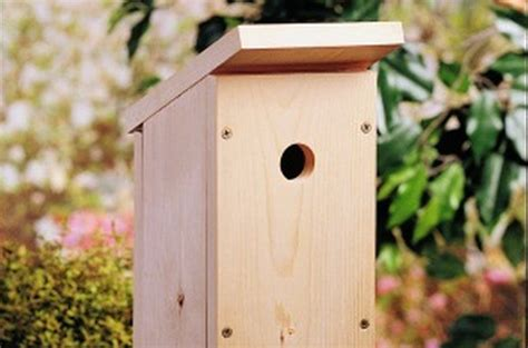 easy bird house pdf diy birdhouse plans one board download birdhouse design hole size 187 woodworktips