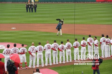 cardinal players as the trainer takes the eagle from