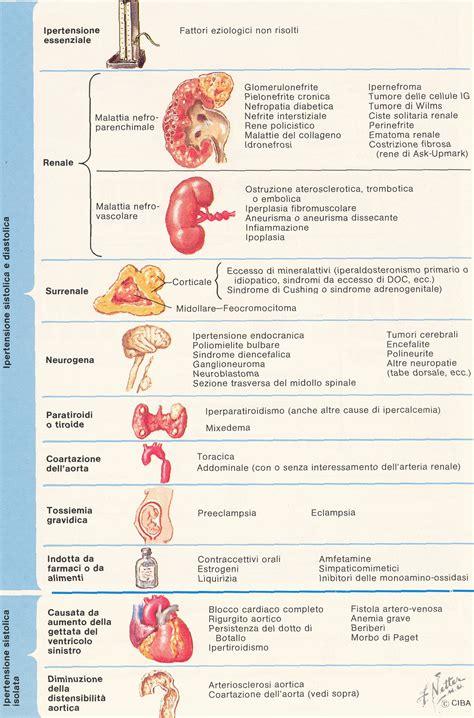 alimenti contro l ipertensione l ordine dei medici in prima linea contro l ipertensione