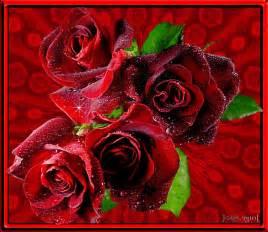 rosas brillantes con movimiento image gallery imagenes animadas de rosas