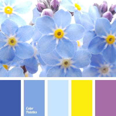 Blue Yellow Colors blue and yellow color palette ideas