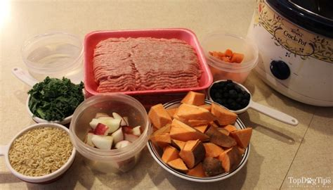 cooking dogs in crock pot beef and pork crock pot food recipe cheap and easy
