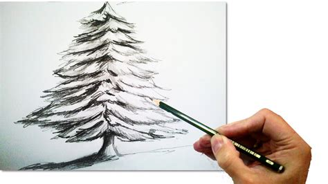 how to draw a realistic christmas tree with pencil draw