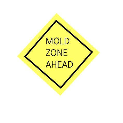 how to kill black mold tags archives what kills mold mold concerns seacliff