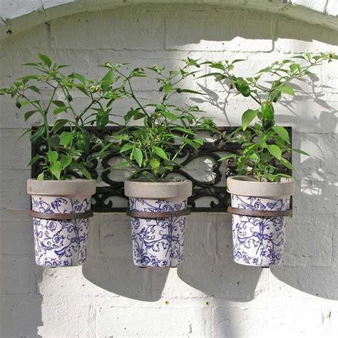 buy wall holder   ceramic pots  worm  turned