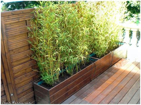 Bac Bambou Terrasse by Shamwerks Terrasse Project Terrasse Project Bacs 224