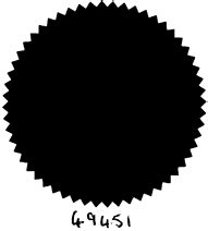 supplemental v amended logo