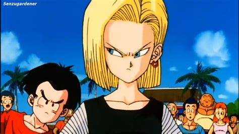 android 18 and krillin i am the senzu gardener android 18 scores a 774 on the punching machine
