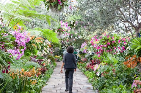 Show At Botanical Garden The Nybg Orchid Show Traveling Back In Time With The