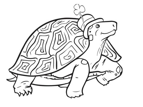 preschool coloring pages st patrick s day printable st patrick s day tortoise coloring pages for