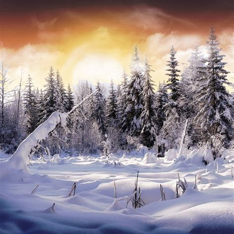 wallpapers free jpg wallpaper snow wallpaper download
