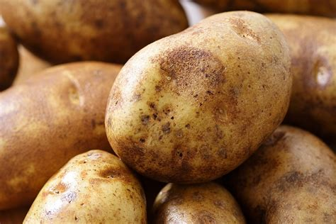 potato growing tips harvest to table