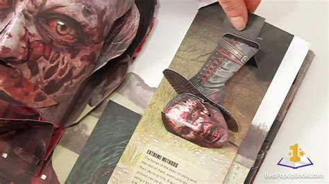 the walking dead the pop up book new the walking dead pop up book best pop up books