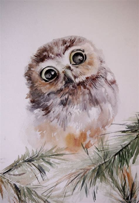 water color owl best 20 owl paintings ideas on owl