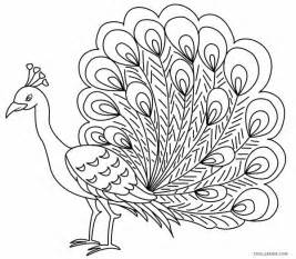 peacock coloring pages printable peacock coloring pages for cool2bkids