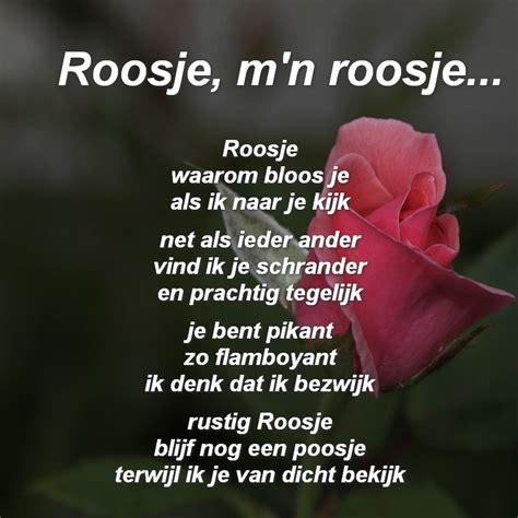 gedicht toon hermans bloem gedichten mensensamenleving me