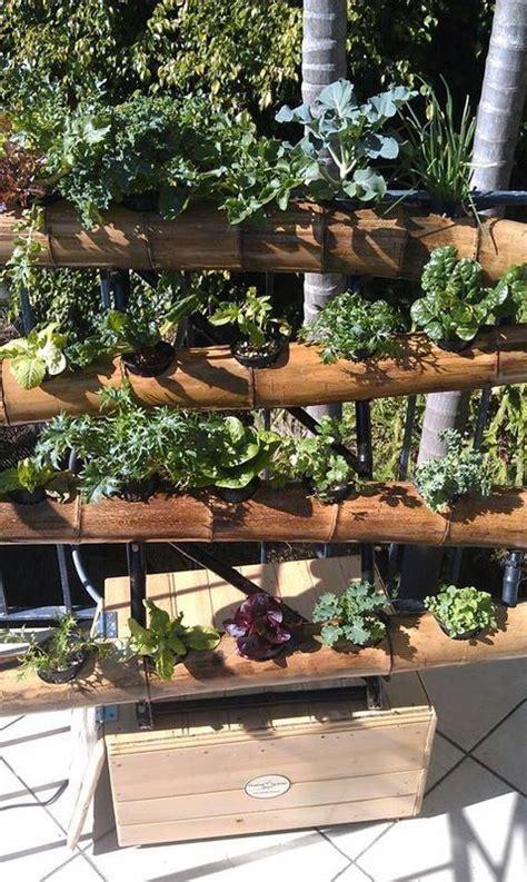 vertical gardens vertical gardening systems ideas