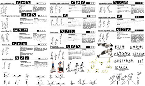 plyo box template 12 plyo box template exercises for beginners pdf