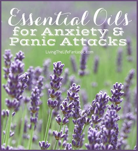 peace without prozac a book that heals beyond self help to self healing books essential oils for anxiety and panic attacks
