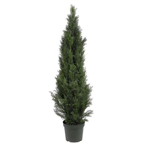 home depot alexandria pine tree nearly 5 ft mini cedar pine silk tree 5291 the home depot