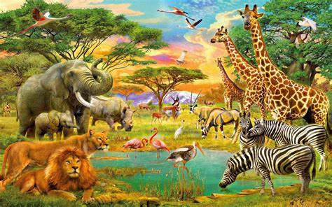forest  animals   single wallpapers hd