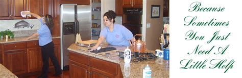 house cleaning services house elves cleaning services