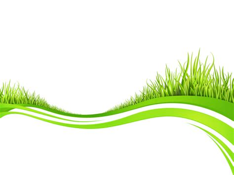 Spring Fresh Plant Grasses Backgrounds Green Nature White Templates Free Ppt Backgrounds Plant Powerpoint Templates Free