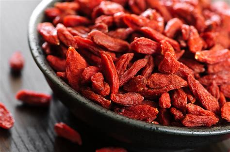 Goji Berry Temperate Climate Permaculture Permaculture Plants Goji