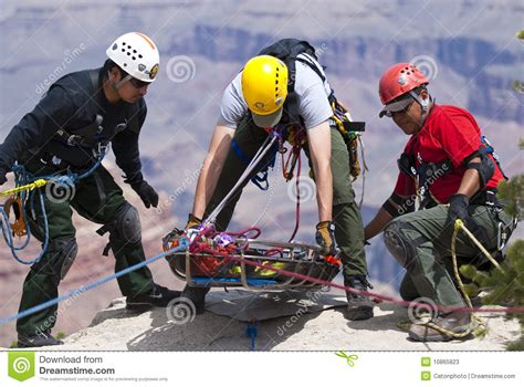 adopt trained service technical rescue editorial stock photo image 10865823