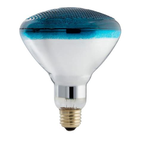 Lu Philips 100 Watt Philips Autism Speaks 100 Watt Incandescent Br38 Flood Light Bulb Blue 385328 The Home Depot