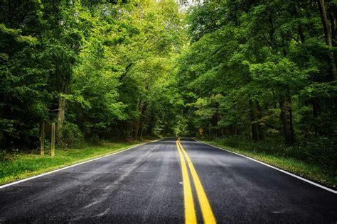 Landscape Road Pictures Road Forest Trees Landscape Wallpaper 4752x3168 468802