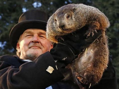 groundhog day phil punxsutawney phil sees shadow predicts 6 more weeks of winter