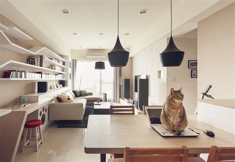 Cat In House by Cat House 4 Interior Design Ideas