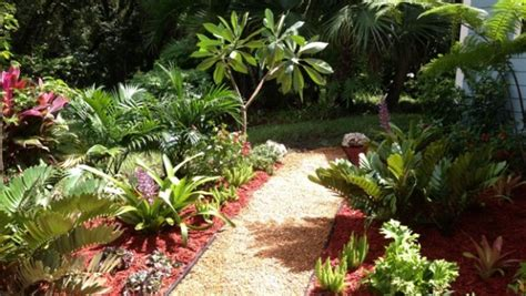 tropical trees for backyard 187 back yard landscape design eileen g designs