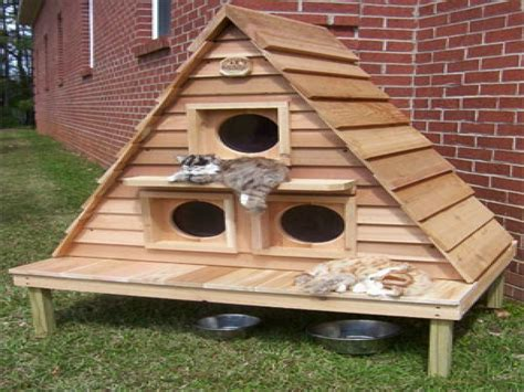 outdoor cat house plans free plans for outdoor winter cat houses outdoor cat house plans cathouse plans mexzhouse com