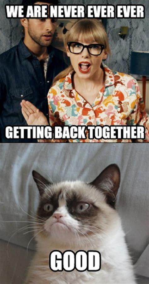 Angry Cat Meme Good - funny grumpy cat meme