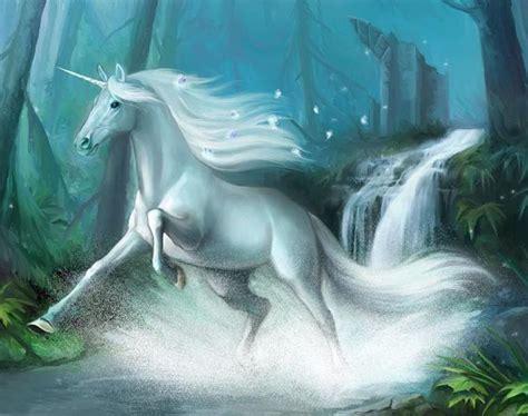 imagenes de unicornios y caballos unicornio corriendo por el rio imagenes y carteles