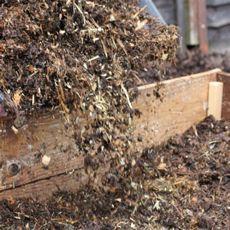 The Spring Vegetable Garden Looking After Your Soil What To Add To Vegetable Garden Soil