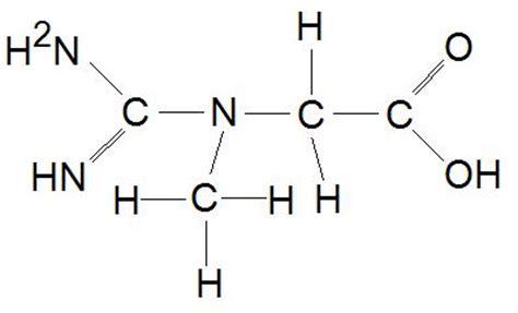 s adenosylmethionine creatine s adenosylmethionine archives