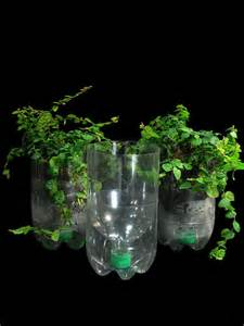recycled plastic bottle planters flickr photo