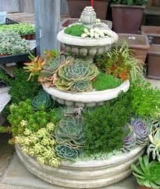 succulent planter diy for under 10 weed em reap sedum projects diy succulent planters the garden glove