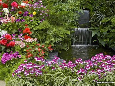 imagenes flores de jardin fotos de casas im 225 genes casas y fachadas fotos de